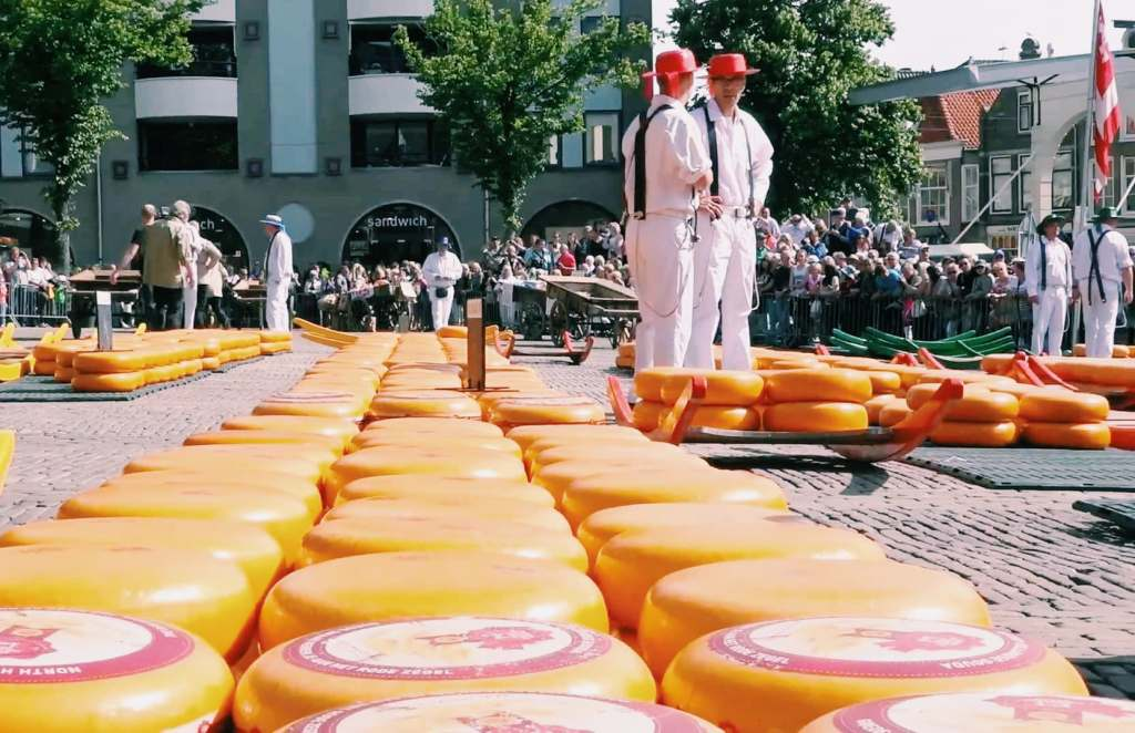 Alkmaar - The City of Cheese. Famous for the Alkmaar Cheese market | Is it worth visiting? What else to do in a day in Alkmaar?